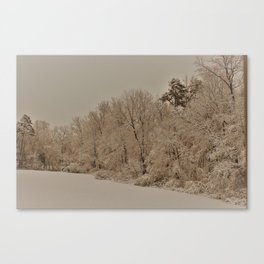 Snowy White with Zeke Filter Canvas Print