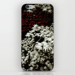 Japanese Maples iPhone Skin