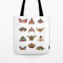 Collector: Moths // Jess Polanshek Tote Bag