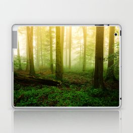 Misty Green Forest Photography Laptop & iPad Skin