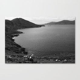 Horseshoe Coast Canvas Print