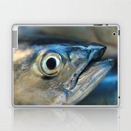 Big eye, tuna, fish, still life, photo, fine art, print, nature, sea, fishing, detail, blue Laptop & iPad Skin