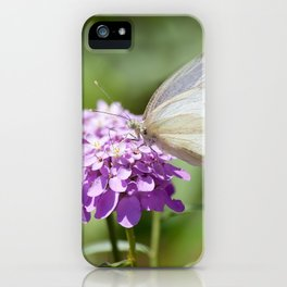 Melanargia larissa kind of anatolia butterfly iPhone Case
