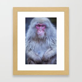 Japanese snow monkey sitting at hot spring in Jigokudani Park Framed Art Print