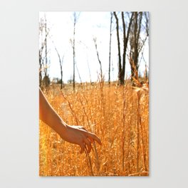 Hands Through Gold Canvas Print