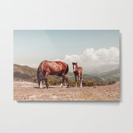 Wild Horses - Horse Photography - Mountains Wanderlust Travel photography by Ingrid Beddoes  Metal Print