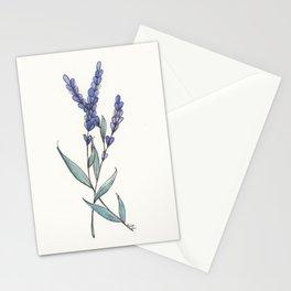 Lavande Stationery Cards