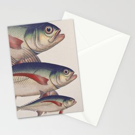 Fish Classic Designs 5 Stationery Cards