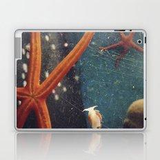 starfish Laptop & iPad Skin