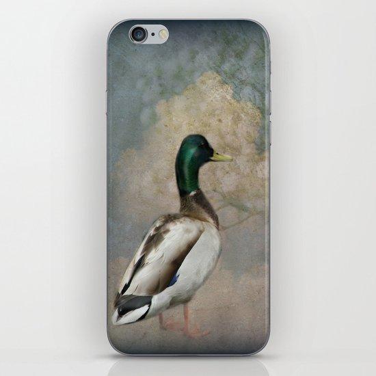 Where the Ducks go iPhone & iPod Skin
