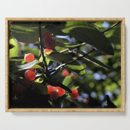 Jane's Garden - Sunkissed Red Berries Serving Tray