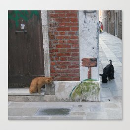 Cat and Dog, Venice, Italy with Graffiti and Venetian alley Canvas Print
