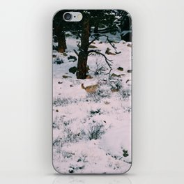 Coyotes on the hunt square version iPhone Skin