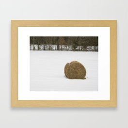 One Bale Framed Art Print