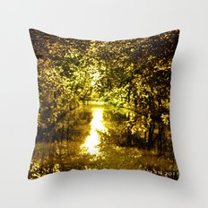 Just a Beautiful sunny day! Throw Pillow