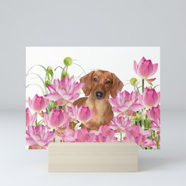 Dog in Field of Lotos Flower Mini Art Print