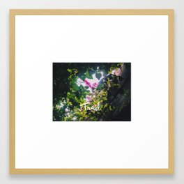 Trail Framed Art Print