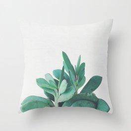 Crassula Throw Pillow