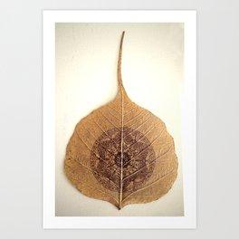 Bo Leaf Art Print