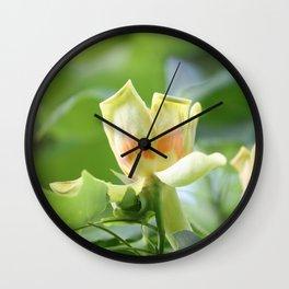 Tulip Tree - Liriodendron Wall Clock