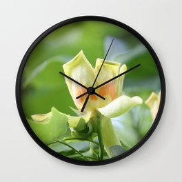 Tulip Tree - Liriodendron Wall Clock