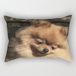 Pomeranian dog in the autumn sun Rectangular Pillow