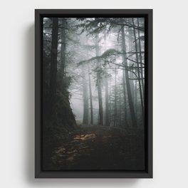 Butano Framed Canvas