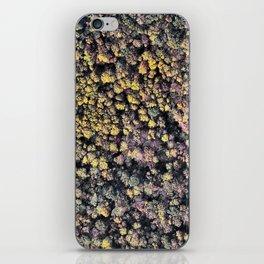 Autumn Forest 1 iPhone Skin
