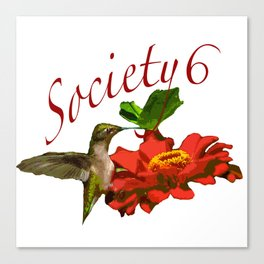 Hummingbird S6 Tee Canvas Print
