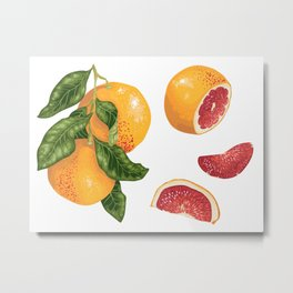 Blossom of Orange Tree Metal Print