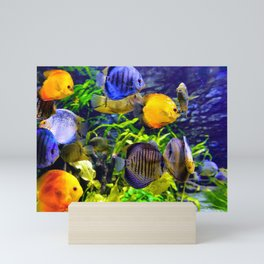 Vibrant Colorful Aquatic Tropical Sea Fish Mini Art Print