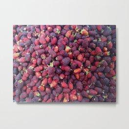 Berries in Paloquemao - Bayas en Paloquemao Metal Print