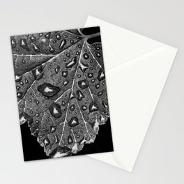 Natures pattern Stationery Cards