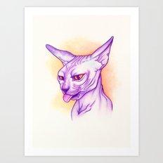 Sphynx cat #02 Art Print