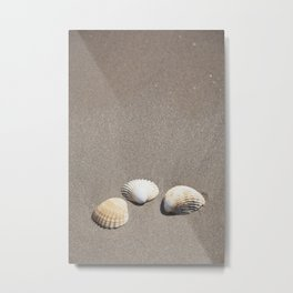 Three Seashells Metal Print