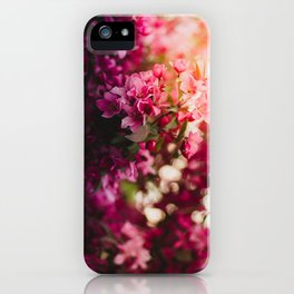 Beauty of Spring II iPhone Case