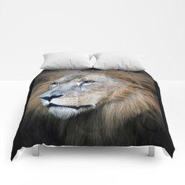 African Lion Comforters