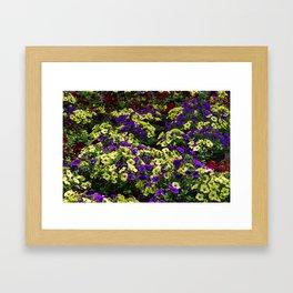 Waves of Petunias Framed Art Print