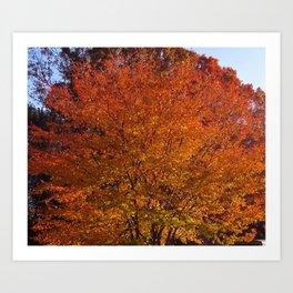 Autumn in the Hudson Valley, New York Art Print