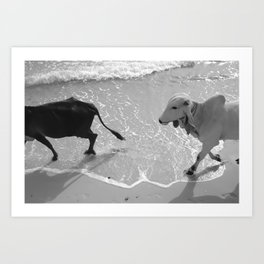 Black and White and Art Print