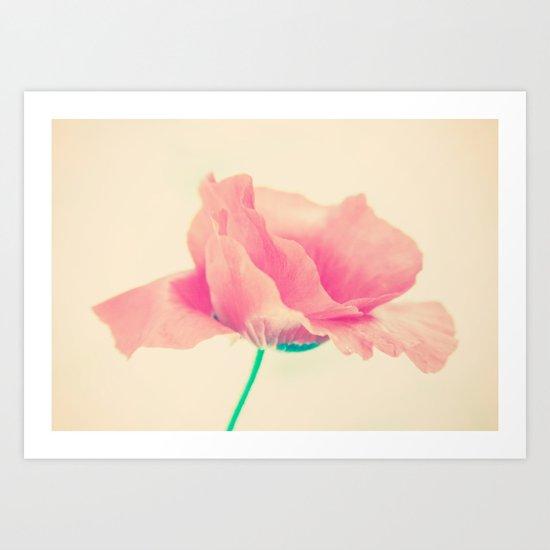 Poppy Art  Art Print