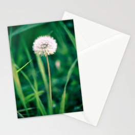 Fluffy Flower Stationery Cards