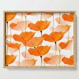 Orange Poppies On A White Background #decor #society6 #buyart Serving Tray