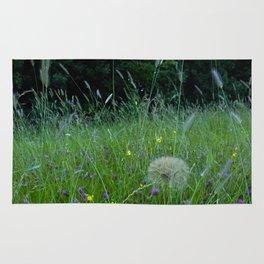 Field of flowers and Dandelions (2) Rug