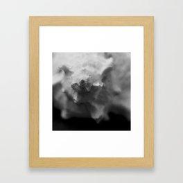 Murex Seashell Close-up Framed Art Print