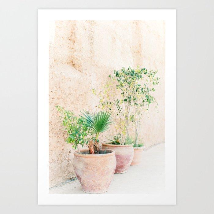 Plants Kunstdrucke