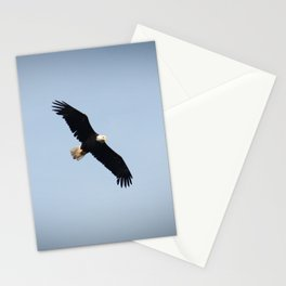 Bald Eagle in Flight Color Photo Stationery Cards