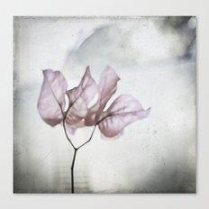 pale flower Canvas Print