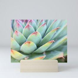 Succulent Zoom Mini Art Print