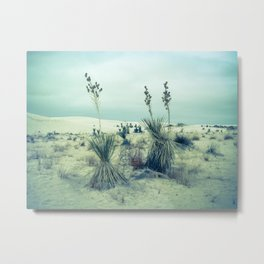 White Sands, New Mexico - WSNM01 Metal Print